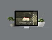 MSP / WEB / UI/UX