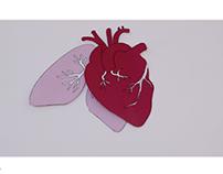Spot | Donazione organi