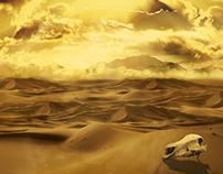 DESCOVERING DESERT