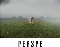 PERSPE / 2016 / Calendar