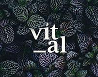 Vital | Brand Identity