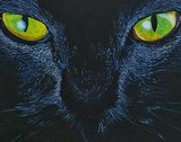 Black cat - 2015