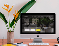 Online store for home plants company