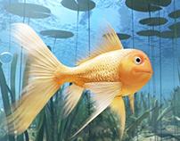 SAZKA - Zlatá rybka