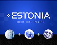 Idea of national identity of Estonia