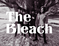 The bleach Website