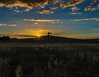 Sunset Bibbona