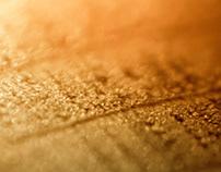 Golden wood   Macro·photography Vol. VII