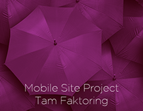 Tam Faktoring Mobile Site Project