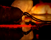 Xesc Reina · Gastronoma 2016