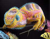 Changes Bristol paper chameleon
