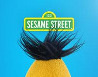 Sesame Street Graphics Toolkit Design
