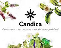 CD CANDICA PRODUKTLINIE