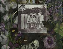 Art Project Collaboration | Faramita Flowers