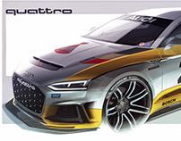 AUDI QUATTRO CONCEPT - Rally livery