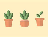 FLAT DESIGN / PLANT