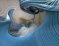 Curl Advection Exploration II