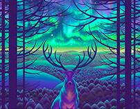 "Short animation ""Forest spirit""."