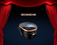 2013 REDMOND Presentation Design