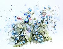 Garden watercolor. Part 2 - Borágo