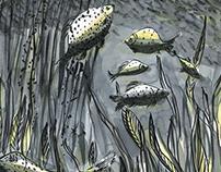 """""""Raubfischen""""/Fishing Predators, Comic"""