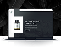 Premium cbd e-commerce website