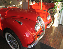 Vintage/Classic Cars