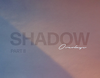 Shadow Play Photo Overlays Vol.2