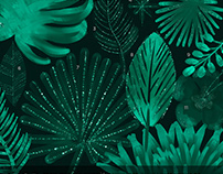 Tropical Nights Couture Design Kit By:Creators Couture