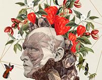 """""""El jardín de Vero"""" shortfilm poster"""