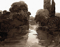 Walnut Ink Drawings