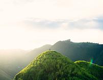 Cerro mime