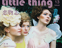 little thing magazine--A Midsumrner Fairy Night