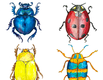 Watercolor Bugs Collection