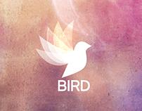 """Logo y merchandising """"BIRD"""""""