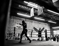 Boxer - Greg Dismukes