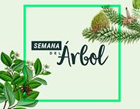 SEMANA DEL ÁRBOL // allGreenup