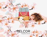 Illustration for PELCOR Spring Summer 2016