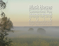 Black Horses - soundtrack for - Summertime Play