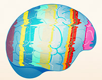 Brain Story Illustrations