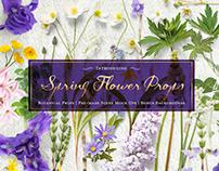 Spring Flower Props + Cardset Mockups
