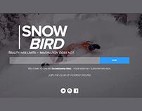SnowBoarding Website