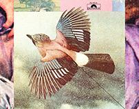 Með vínyl að vopni / Vinyl Tap