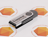 DT101 USB Key Free 3D Model
