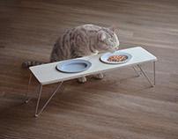 Feeding Felines