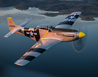 Yak3U SteadFast with P-51D Mustang Air to Air