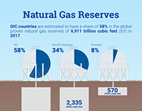 Data Snack on Natural Gas Reserves of OIC Countries