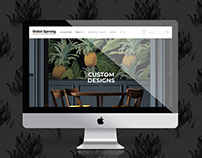 Robin Sprong Website Design