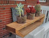 Triple Cactus Planter