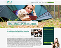 VIFHE (virtual institute of higher education) Website
